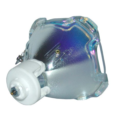 Lutema Economy for Everest RLC-043 Projector Lamp (Bulb Only) - image 1 of 5