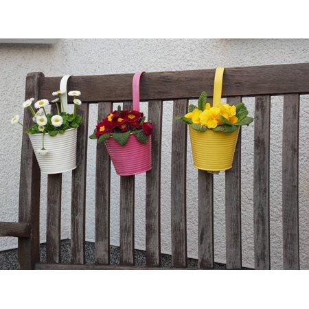 Canvas Print Flower Pot Flowers Potted Plant Plant Pot Flowerpot Stretched Canvas 10 x (Pod Flowers)