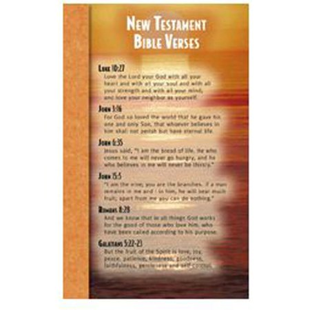 North Star Teacher Resource NST2107 New Testament Bible Verses Memory Cards - image 1 of 1