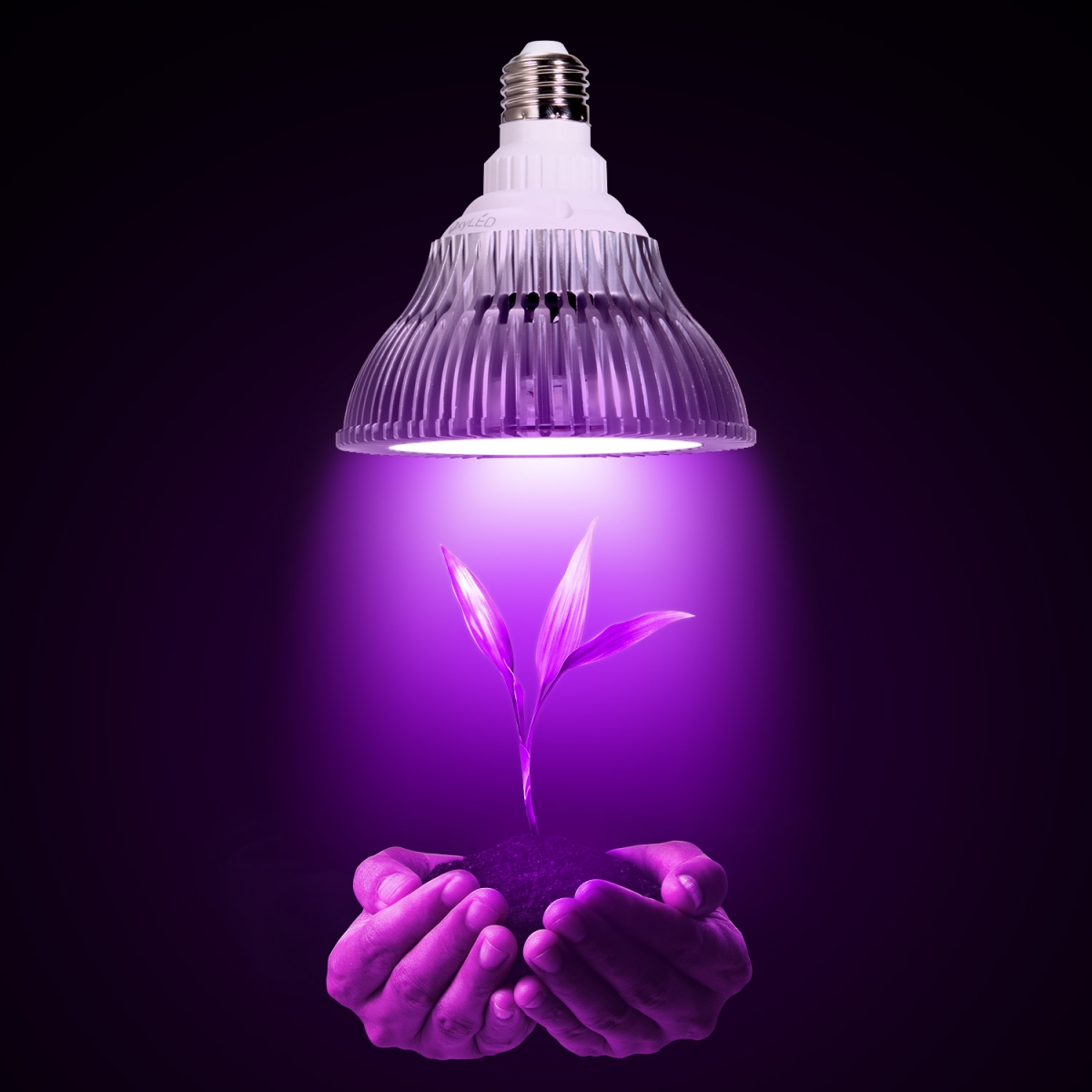 OxyLED LED Plant Grow Light Bulb, Hydroponic Plant Grow Lights for Greenhouse and Hydroponic Indoor Plants,  Indoor Plant Growing Lights Bulb (E26 12W 3Blue/9 Red LEDs)