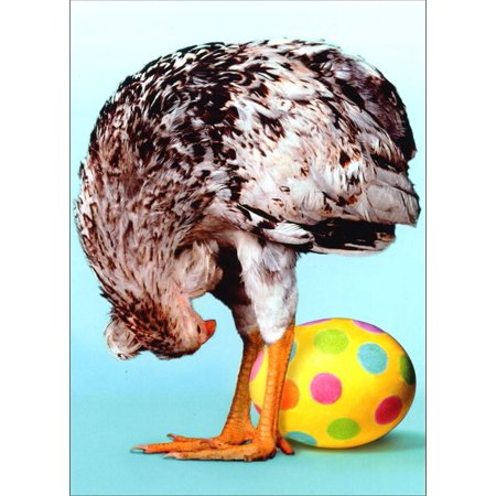 Avanti Press Chicken Sees Egg Through Legs Funny / Humorous Easter Card (Easter Egg Chicken)