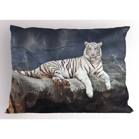Tiger Pillow Sham Albino Cat Sitting on Rock Sublime Nature Marvelous Animals Endangered Species, Decorative Standard King Size Printed Pillowcase, 36 X 20 Inches, Slate Blue White, by Ambesonne