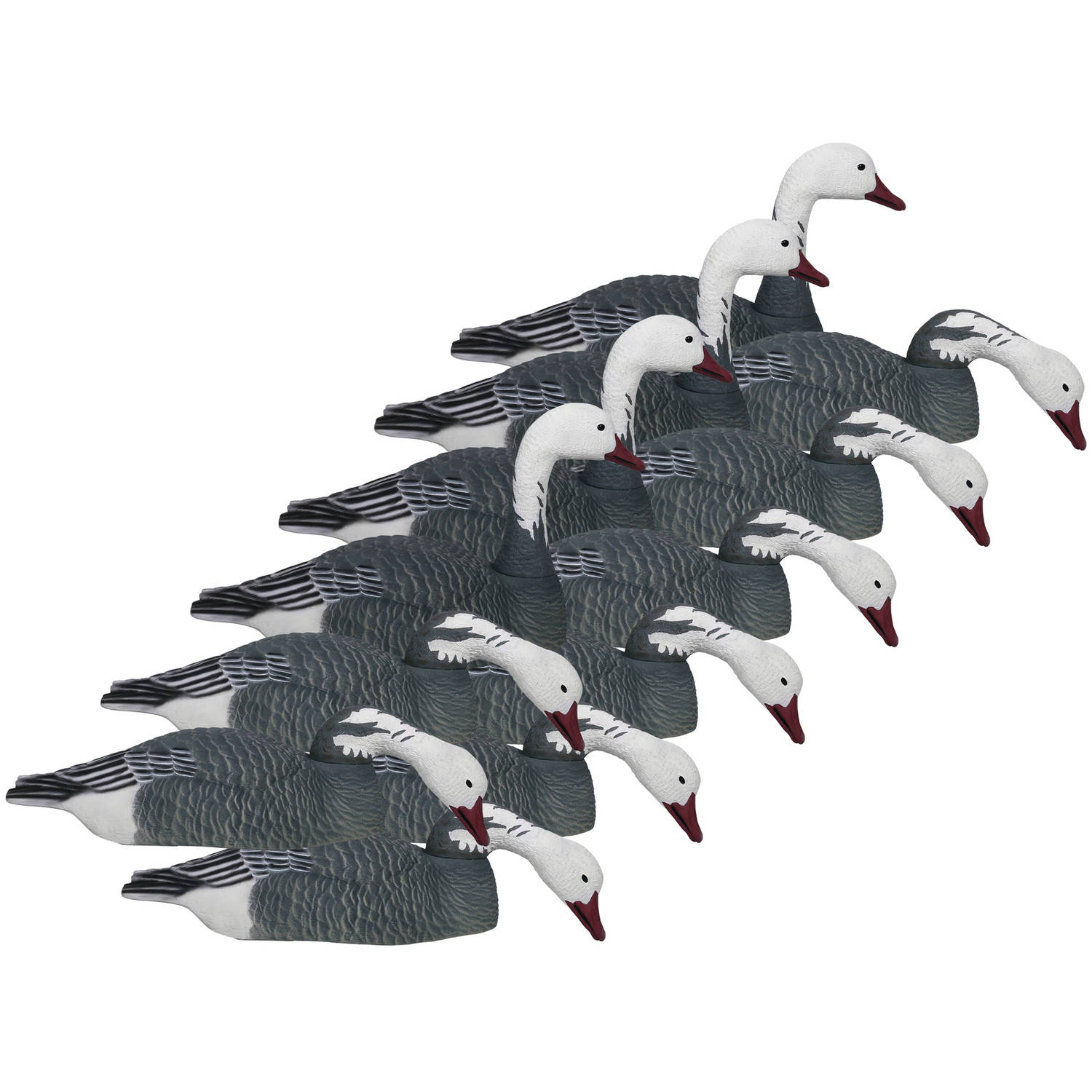Hard Core Brands Economy Series Blue Goose Touchdown Shell Decoys, Multiple Sizes Available
