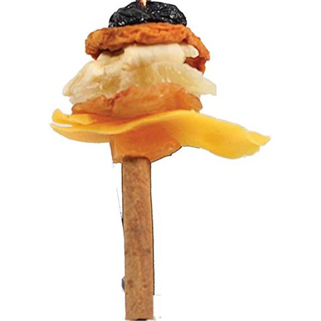 A&E Cage 001409 Happy Beaks Fruit on Cinnamon Skewer Bird Treat - image 1 de 1