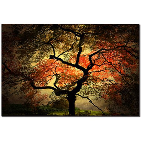 Trademark Art Japanese I Canvas Art by Philippe Sainte-Laudy
