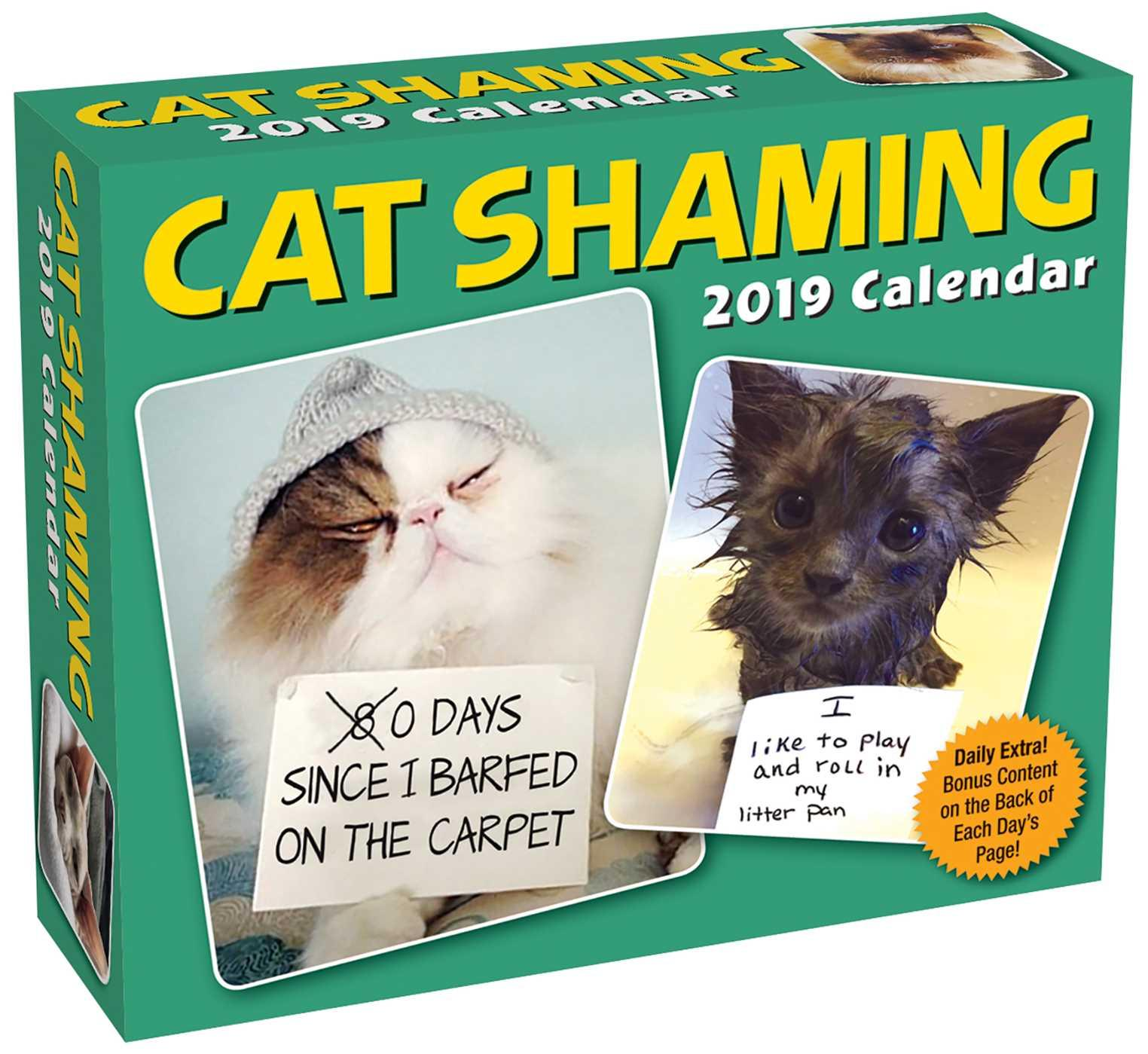 Cat Shaming 2019 Day-To-Day Calendar (Other)