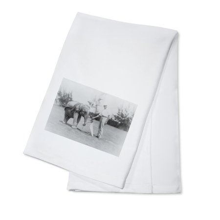 Elephant Caddie on Golf Course Photograph (100% Cotton Kitchen Towel) - Main Course Dishes For Halloween