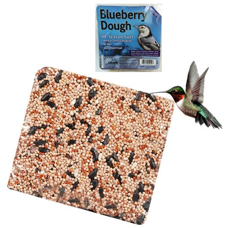 All Finches - Wild Bird Suet Cake 11.25 oz All Season Food Treat Heath Outdoor Products Choose