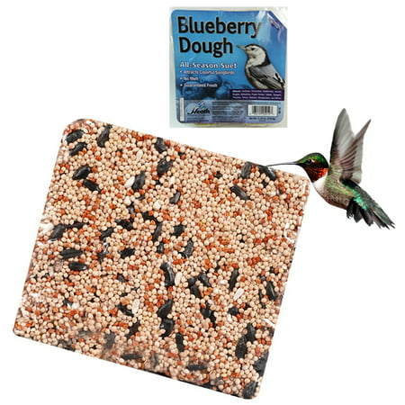 Wild Bird Suet Cake 11.25 oz All Season Food Treat Heath Outdoor Products Choose Berry Blend Suet Cake