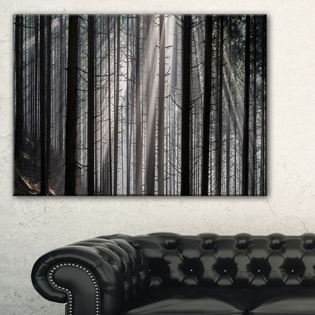 DESIGN ART Sunbeams Peeking Through Dark Forest - Large Forest Wall Art Canvas - Multi-color