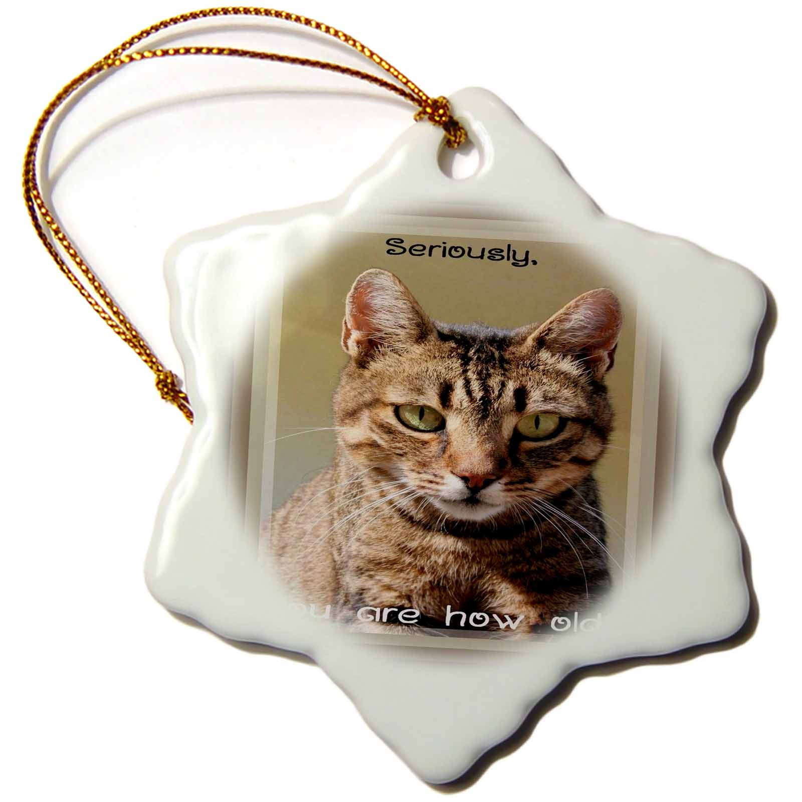 3dRose Seriously, Your How Old  A birthday greeting card with a tabby cat and funny caption, Snowflake Ornament, Porcelain, 3-inch