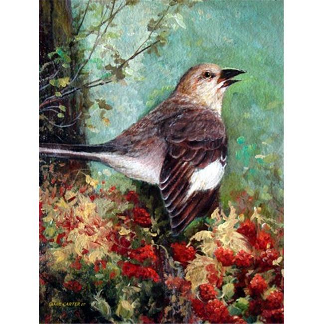 Carolines Treasures PJC1061GF Mockingbird Flag Garden Size - image 1 de 1