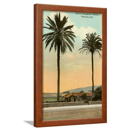 Palm Trees Ventura Framed Print Wall Art