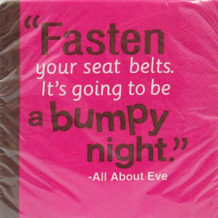 Bachelorette 'Fasten Your Seat Belts' Small Napkins