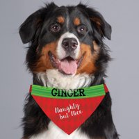 Personalized Naughty, But Nice Dog Bandana Collar Cover