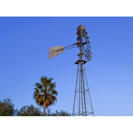 Countryside Windmill - Laminated Poster Cyprus Windmill Palm Tree Countryside Paralimni Poster Print 11 x 17