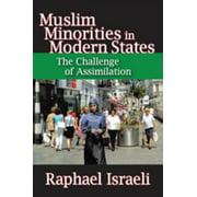 Muslim Minorities in Modern States - eBook