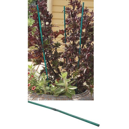 Best Garden Bamboo Plant Stakes