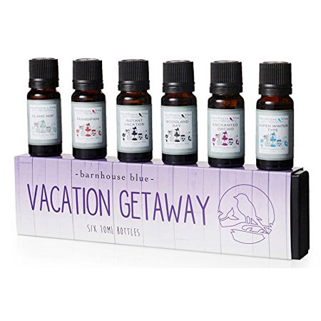 Vacation Getaway Premium Grade Fragrance Oil - Gift Set 6/10ml Bottles - Island Hop, Instant Vacation, Aspen Winter, Woodland Bay, Enchanted Orchid, Frangipani