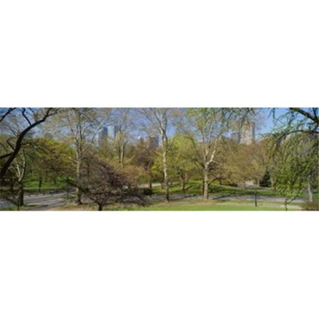 Trees in a park  Central Park West  Central Park  Manhattan  New York City  New York State  USA Poster Print by  - 36 x 12 - image 1 of 1