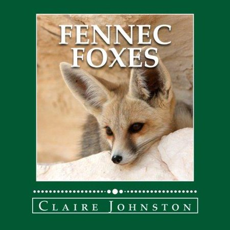 Fennec Foxes  Wily Desert Hunters  The My Favorite Animals Series