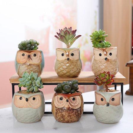 Gobestart Owl Flower Pot Thumb Pot Set Multi-meat Pot Mini Flower Pot Perfect Gift Idea ()