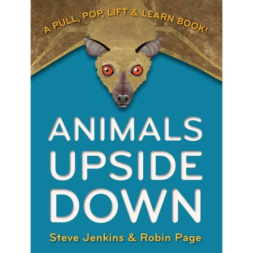 Animals Upside Down : A Pull, Pop, Lift & Learn Book!