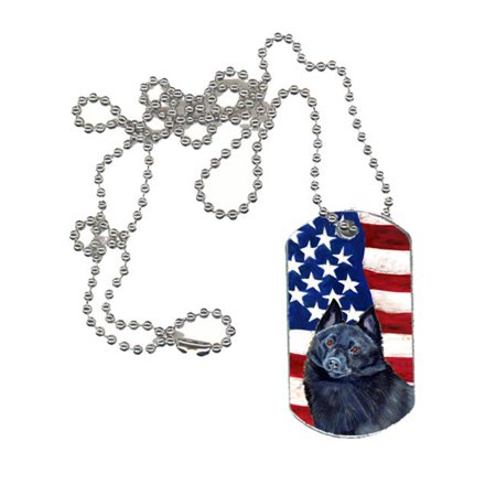 Carolines Treasures LH9009DT USA American Flag with Schipperke Dog Tag - image 1 de 1