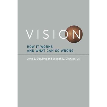 Vision  How It Works And What Can Go Wrong