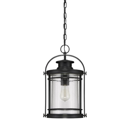 Sol 72 Outdoor Catalina 1-Light Outdoor Hanging Lantern by