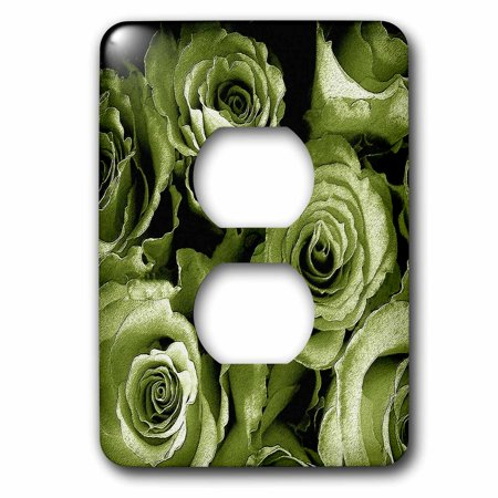 3dRose Close up of dreamy pale sage green rose bouquet 2 Plug Outlet Cover lsp 29868 6