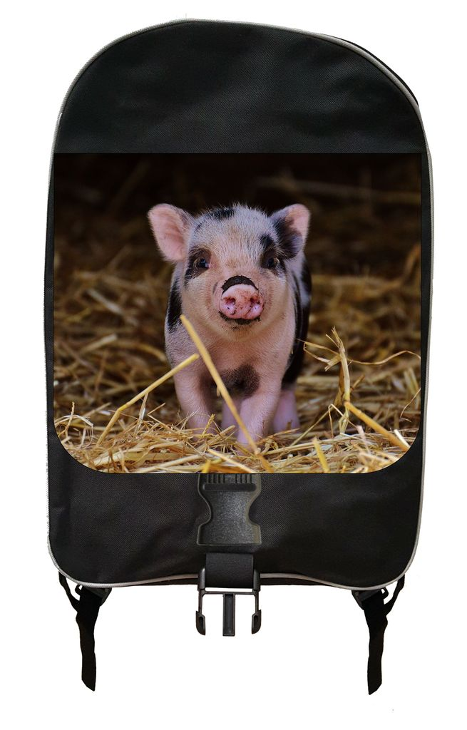 Piglet in the Straw Backpack