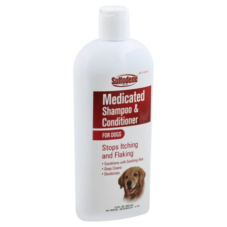 Sulfodene 100523760 Medicated Shampoo for Dogs (Medicated Shampoo For Dogs With Skin Problems)
