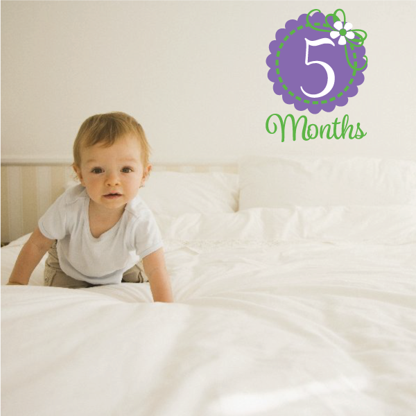 5 Baby Months Color  Wall Decal - Vinyl Decal - Car Decal - Vd008 - 25 Inches