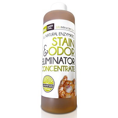 Enzyme Cleaner CONCENTRATE. Safe, All Natural Carpet Cleaning and Laundry Stain Remover & Odor Neutralizer. All In One, All Surface Non-Toxic Cleaner. Concentrate Makes a GALLON (128 oz) Of Product