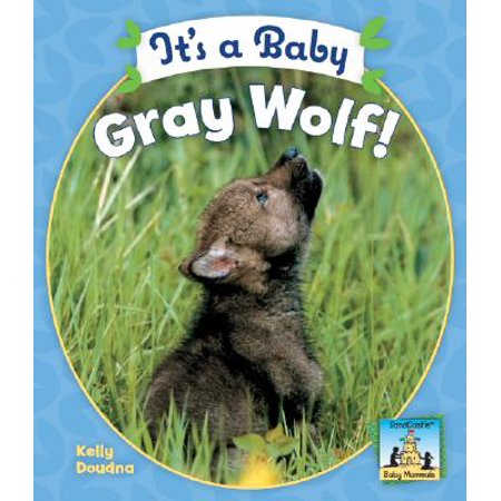It's a Baby Gray Wolf! - Baby Items A To Z