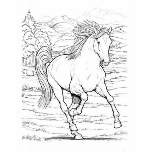 Wonderful World Of Horses Coloring Book Walmart Com Walmart Com