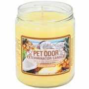 Pet Candle - Pet Odor Exterminator Candle - Pineapple Coconut Jar (13 oz)