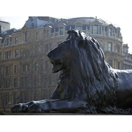 Bronze Lion Statue by Sir Edwin Landseer, Trafalgar Square, London, England, United Kingdom, Europe Print Wall Art By Peter Barritt