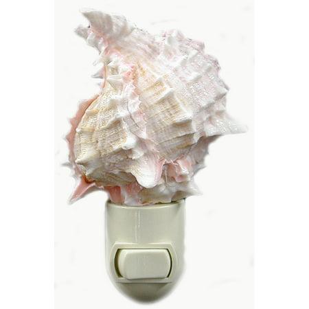 Seashell Night Light Real Pink Murex Shell Beach Decor w. on/off switch Beautiful Coastal Cottage - Seashell Night Light