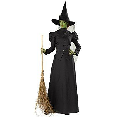 morris costumes womens witch classic deluxe theme party fancy halloween dress, s