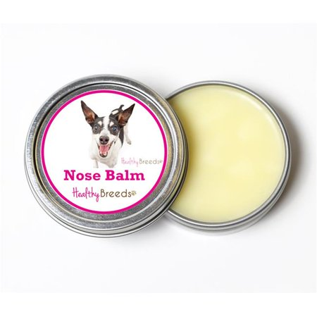 Rat Terrier Breed (Healthy Breeds 840235192084 2 oz Rat Terrier Dog Nose Balm )