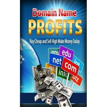 Domain name profits - eBook