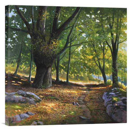 Global Gallery 'Luce Nel Bosco' by Adriano Galasso Painting Print on Wrapped Canvas