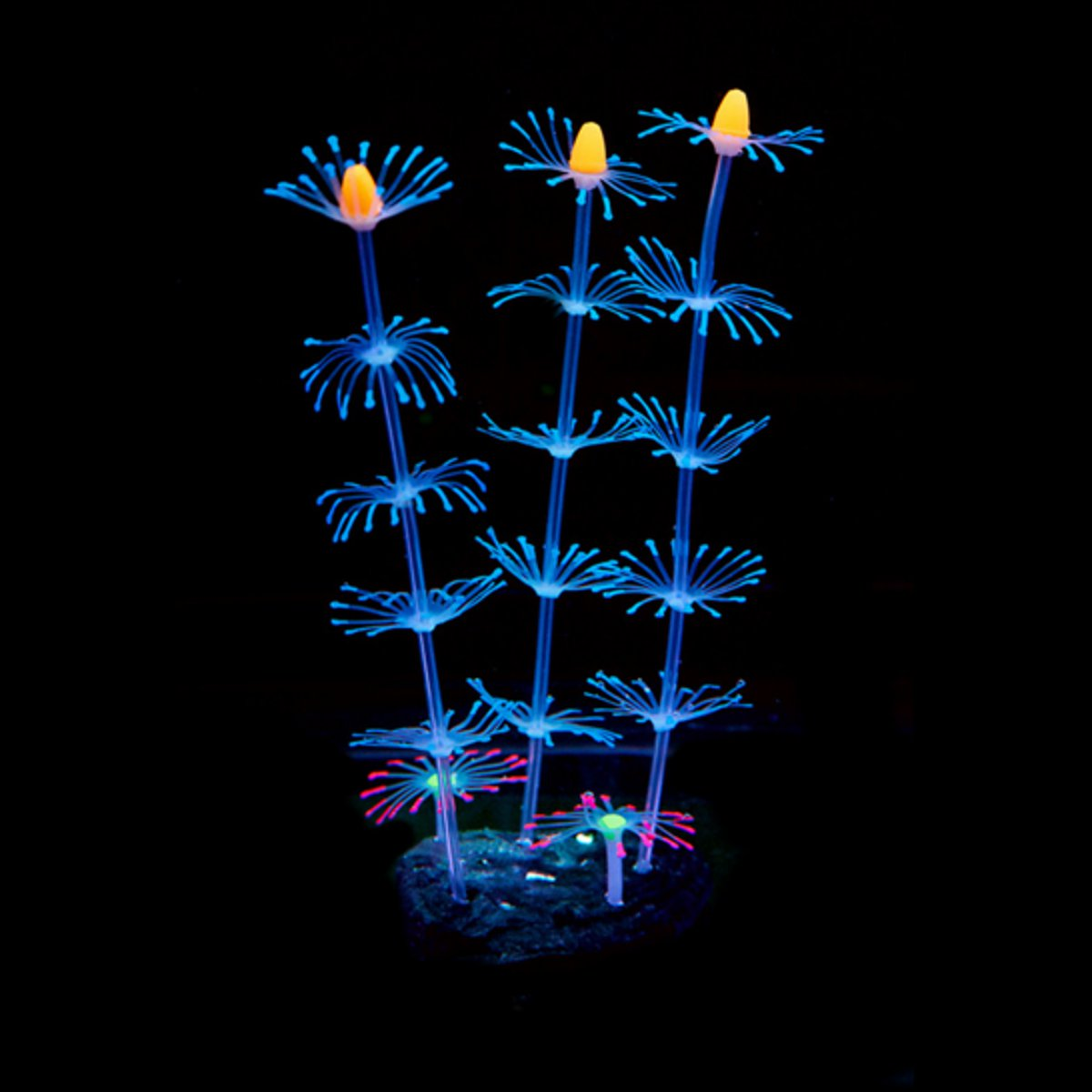 Moaere Fluorescent Coral Plant Aquarium Decoration Glow In The Dark Fish Tank Ornament