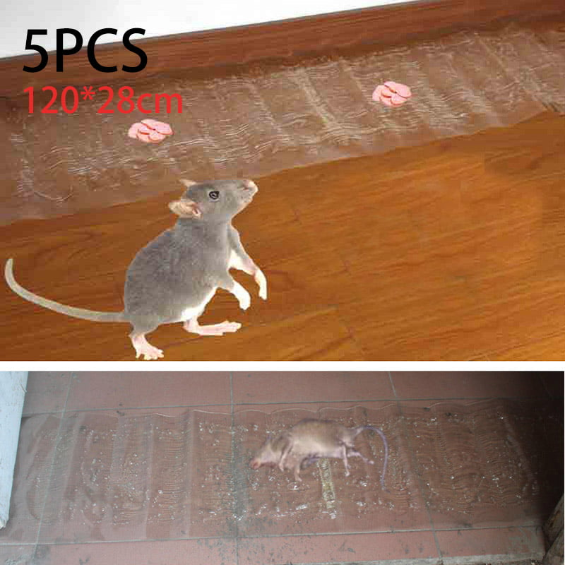 Large Size Mice Mouse Rodent Glue Trap Boards Rats Snakes Bugs Super Sticky Pads