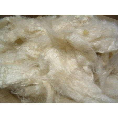 Organic Kapok Fill (2.5 lbs) for pillows, crafts, cushions, stuffing. Made in USA](Pillow Crafts)