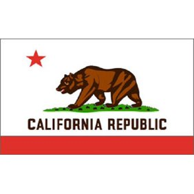 California State Flag 3x5 Ft. Nylon Official State Design ...