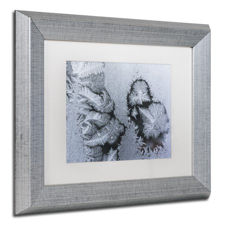 - Trademark Fine Art 'Window Frost Pattern 4' Canvas Art by Kurt Shaffer White Matte, Silver Frame