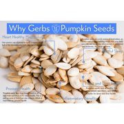 Lightly Sea Salted Pumpkin Seeds In Shell by Gerbs - 2 LBS - Top 12 Food Allergen Free & Non GMO - Vegan & Kosher